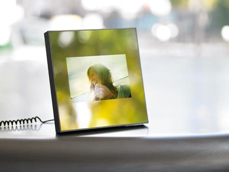 parrot specchio frame martin szekely cadre photo