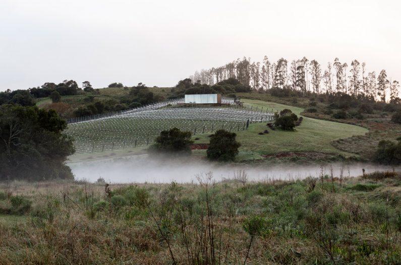 sacromonte-landscape-shelters-mapa-architecture-hotels-uruguay-prefabricated_col_12