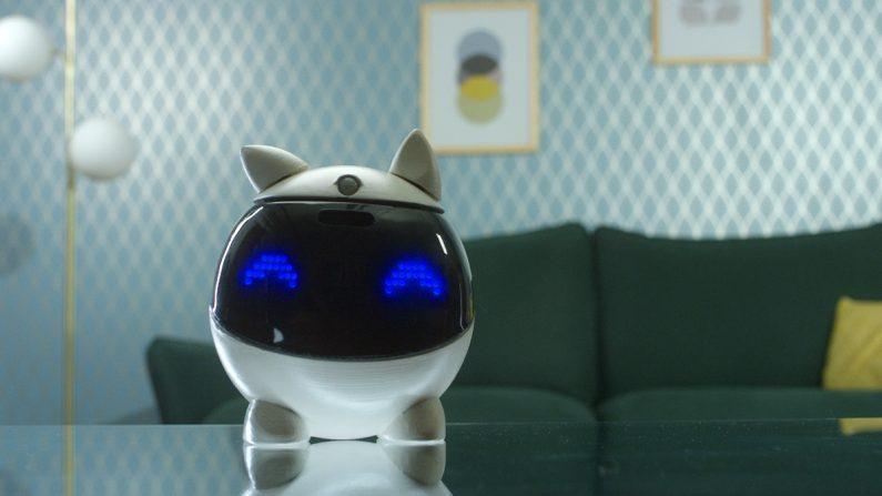 Winky, le robot pour apprendre à programmer