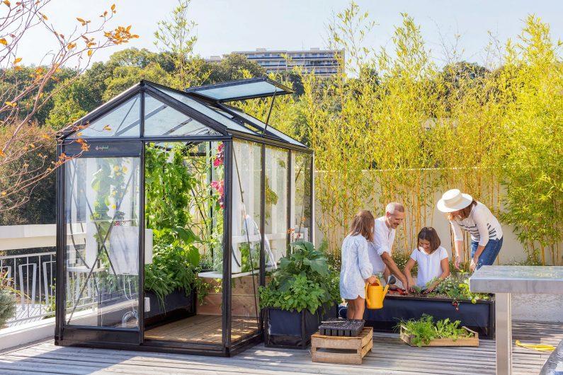Myfood : des solutions pour cultiver efficacement ses légumes à la maison